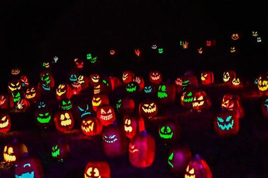 TheGlowPumpkins