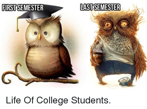 firstsemester-last-semester-_p_life-of-college-students-_-p_-33532911