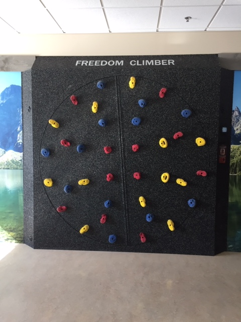 A large climbing wall with multicolored footholds